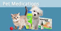 Discount Pet Meds